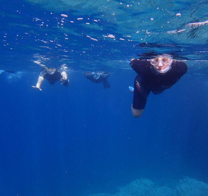 Découverte des fonds marins des îles Petali   © Dikelas Dive Center