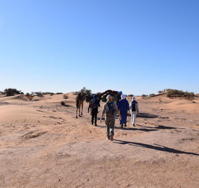 Début de 3 jours de trek dans le désert du Sahara