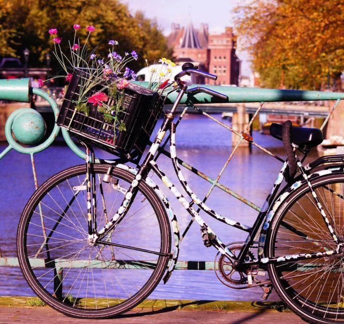 Au royaume du vélo
