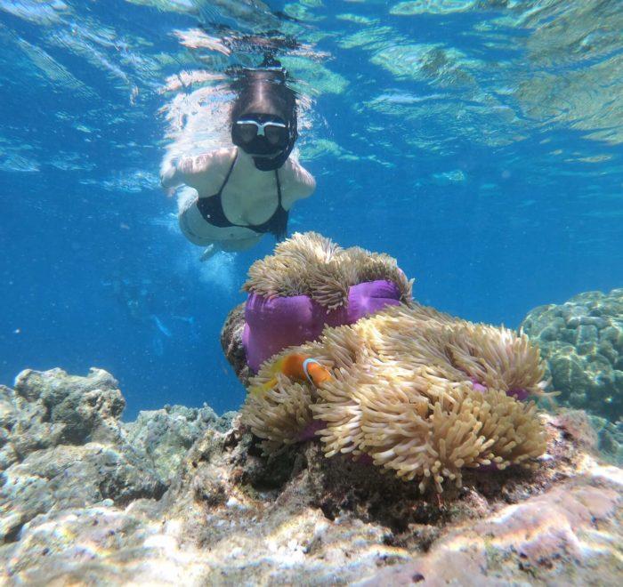 Snorkeling aux îles Surin