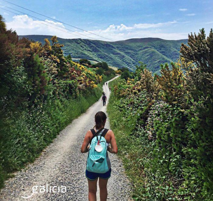 Les 100 derniers kilomètres du Camino Francès | © Turismo de Galicia