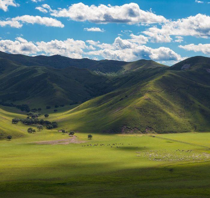 Des paysages à couper le souffle !