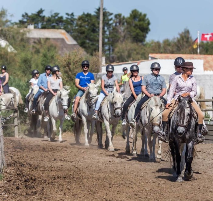 Des balades à cheval | © Max Ledieu