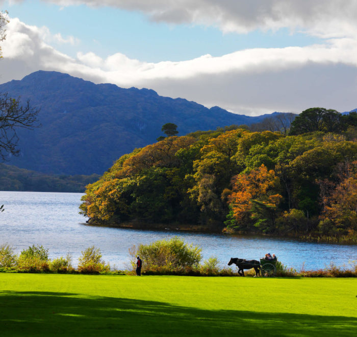 Lac de Muckross   © Tourism Ireland, Chris Hill Photographic